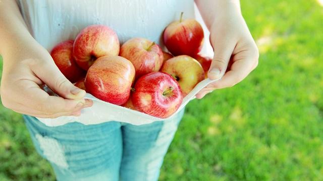 リンゴのひとかじりとは? 沢山のリンゴを貰った