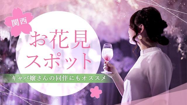 同伴にもオススメ🌸関西お花見スポット